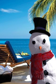 Christmas In Florida Images.469 Best Florida Christmas Images Coastal Christmas