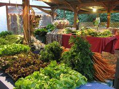 Boggy Creek Farm- Austin, TX  Year-round USDA Certified Organic   Produce