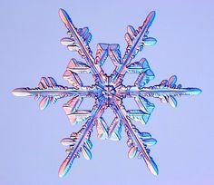 #snowflake