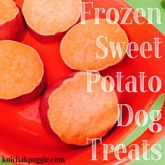 Frozen sweet potato dog treats.  1 large sweet potato,  1/4 c. flavour booster (like peanut butter, meaty canned dog food, low fat cream cheese etc.)