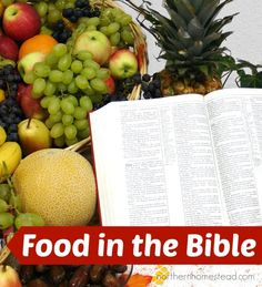 Our theme for the month of November is Food, Feasts and Gluttony.  Now, maybe that seems a little off the wall, but it's really not.  Think about it.  The Old Testament includes Eve eating th…