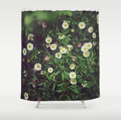 A lovely shower curtain.