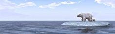 Adrift 150104 1-1
