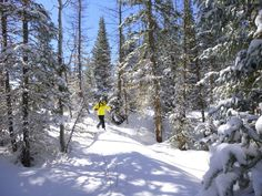 Backcountry skiing at Vista Verde is amazing!