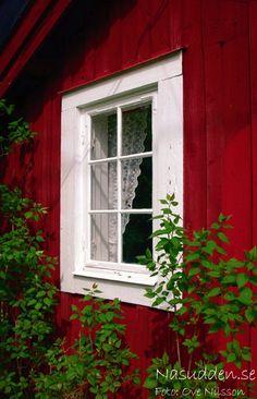 Galleri - stuga uthyres på Utö - skärgårdsstuga - Nasudden.se