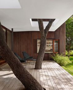Old trees become an integral part of the structure of the modern Texas home - Decoist