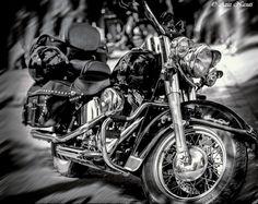 The beautiful Harley Davidson Still Life, Harley Davidson, Lenses, Culture, Blog, Photography, Beautiful, Photograph, Fotografie
