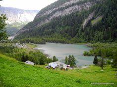 Lac de #derborence #suisse
