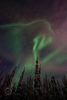 - northern lights - priska wettstein photography