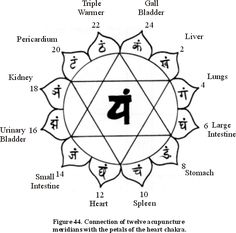 connecting the meridians with the petals of the heart chakra http://infinityflexibility.com/wp/