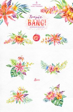 Tropic Bang! Floral collection by OctopusArtis on Creative Market
