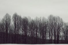 Winter again 1  Snowy black and white rustic by mingtaphotography