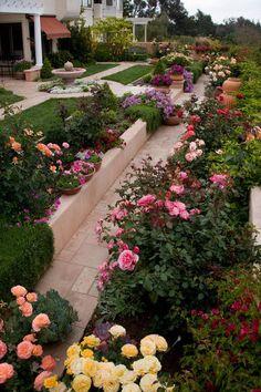 LOVE the colors! traditional landscape by Margie Grace - Grace Design Associates