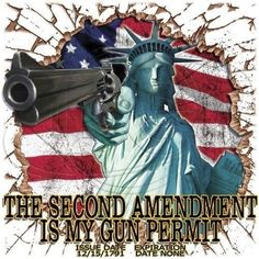 Via Guns With the high court's latest ruling on same-sex marriages, some contend the decision could lead to increased gun rights, [. Shall Not Be Infringed, American Freedom, American Pride, American Flag, American Soldiers, Southern Pride, Thing 1, Gun Rights, Civil Rights