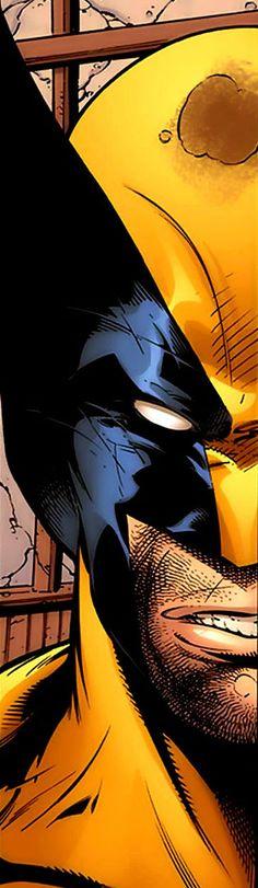 Wolverine by Adam Kubert