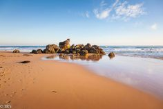 Best Places To Visit In Victoria 8 Places In Melbourne, Wilsons Promontory, Alpine Adventure, Perfect Road Trip, Falls Creek, Seaside Resort, Beach Town, Outdoor Art, Walking In Nature