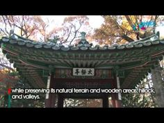 Korean Palace - Changdeokgung [A Guest is Coming to the Palace...] - YouTube