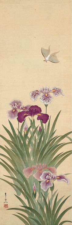 Irises and MothSuzuki Kiitsu  (鈴木其一; 1796–1858)Edo periodHanging scroll; ink, color, and gold on silk101.6 x 33 cm (40 x 13 in.)Donated to The Metropolitan Museum of Art, New York by the Mary and Jackson Burke Foundation in 2015