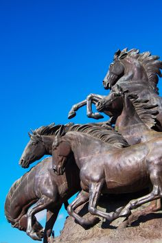 "Horse Art - Bronze Sculpture Statue tile ""Mustangs"" by Alexander Phimister Proctor Horse Sculpture, Animal Sculptures, Abstract Sculpture, Metal Sculptures, Equestrian Statue, Equine Art, Outdoor Art, Horse Art, Art Gallery"