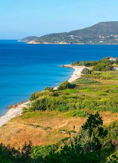 Kedros beach, Samos island, Greece Samos, Crete Greece, Vacation Spots, Cool Pictures, Tourism, Island, World, Beach, Water