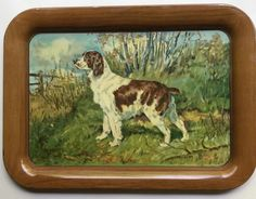 """1940s A.C. Co Tin Litho Tray SPRINGER SPANIEL Hunting Dog by Ole Larsen 17 1/2"""" #ACCo"""