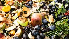 Food waste is not just a problem in the US, but in many other countries as well. Luckily, there are plenty of things we can do to prevent it. #Happonomy