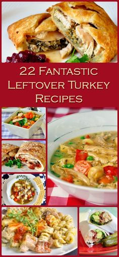 22 fantastic, original leftover turkey recipes. From Turkey Turnovers to Turkey Bacon Parmesan Rotini you're going to love these great leftover ideas.