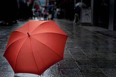 Umbrella  Shopping Online in India
