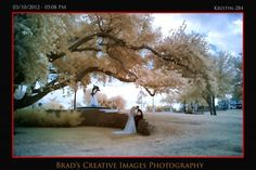 Hot Wedding Images. this is one of our infrared wedding images shot at Indian Riverside Park.
