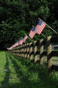 AMERICA BEAUTIFUL / Flags on a fence. Cool