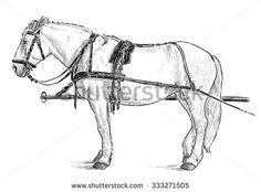 horse the harness - Yahoo Результаты Поиска картинок Horse Harness, Watercolor Ideas, Horses, Animals, Art, Art Background, Climbing Harness, Animales, Animaux