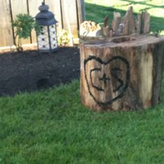 Rustic log chair beside the garden:)