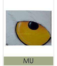 nouvelles oeuvres dans la galerie Mu