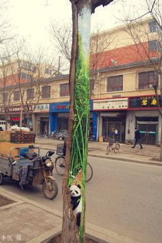In China, public trees have been transforming into beautiful works of art thanks to 23-year-old art student Wang Yue.