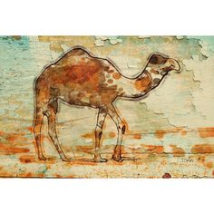 Camel. Large Camel Rustic Canvas Print by Irena Orlovup to 60 Camel... ($350) ❤ liked on Polyvore featuring home, home decor and wall art