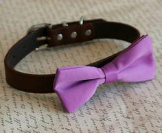 Lavender dog Bow tie collar Pet wedding accessory Purple
