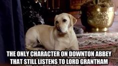 Lord Grantham is annoying