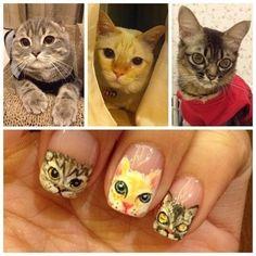 Unhas decoradas gatinhos