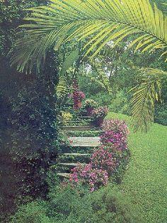 Flora VIWA| Jardinagem & Paisagismo