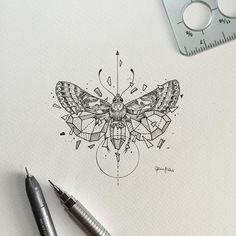 Geometric Beasts | Moth