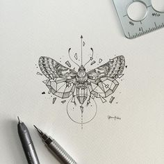 Geometric Beasts | Moth   https://www.instagram.com/kerbyrosanes/