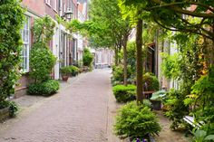 12 Top-Rated Day Trips from Amsterdam Green Street, Landscape Architecture, Landscape Design, Day Trips From Amsterdam, Public Space Design, Green Environment, Small Gardens, Urban Design, Trees To Plant