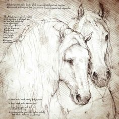 """Andalusian Duo"" Detail of a Da Vinci style drawing"
