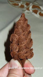 Pigne con carta crespa (piega caramella)