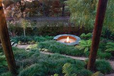 A zig-zagging white gravel pathway leads to a circular concrete-and-steel fire pit at this leafy garden in Oakland Hills, California. Courtesy of Stefan Thuilot. This originally appeared in Simple, Concrete-and-Steel Fire Pit in Oakland. Gravel Landscaping, Landscaping With Rocks, Modern Landscaping, Gravel Pathway, Landscaping Ideas, Fire Pit Drawing, Fire Pit Video, White Gravel, Steel Fire Pit
