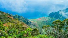 Скачать обои море, деревья, берег, цветы, Гавайи, раздел пейзажи в разрешении 1920x1080