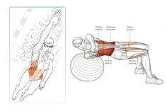 La natación es un deporte completo, que pone en acción toda tu musculatura. Te mostramos los ejercicios para entrenarla y convertirte en mejor nadador.