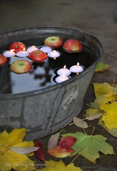 HWIT BLOGG: FLOWERS by titti & ingrid - Höstfint på trappan! Apple Harvest, Harvest Time, Fall Harvest, Seasonal Decor, Fall Decor, Spiked Apple Cider, Pumpkin Carving Contest, Bobbing For Apples, October Country