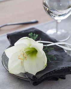 Hvit amaryllis er en av mine julefavoritter ✨Regram @mestergronn #gofollow #ad