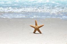 Make a wish upon a starfish. Corpus Christi, Texas